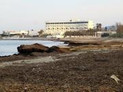 Strand furchtbar