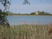 In der Lagune Caorle