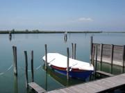 In der Lagune vor Cavallino
