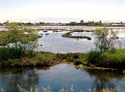 Lagune Venedigs