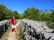 Steinreiches Land