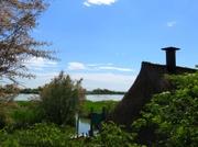 In der Lagune