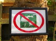 Pilze wachsen verboten ?